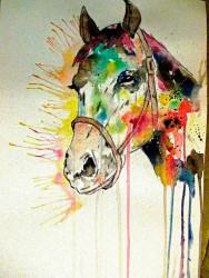koni 7